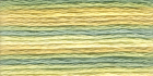 Мулине Anchor Multicolor 1353